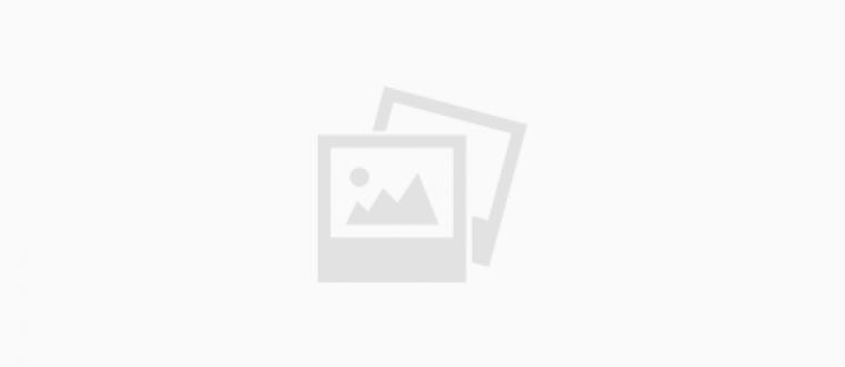 דמדומים – דיון ספרותי / רחלי פרנקל